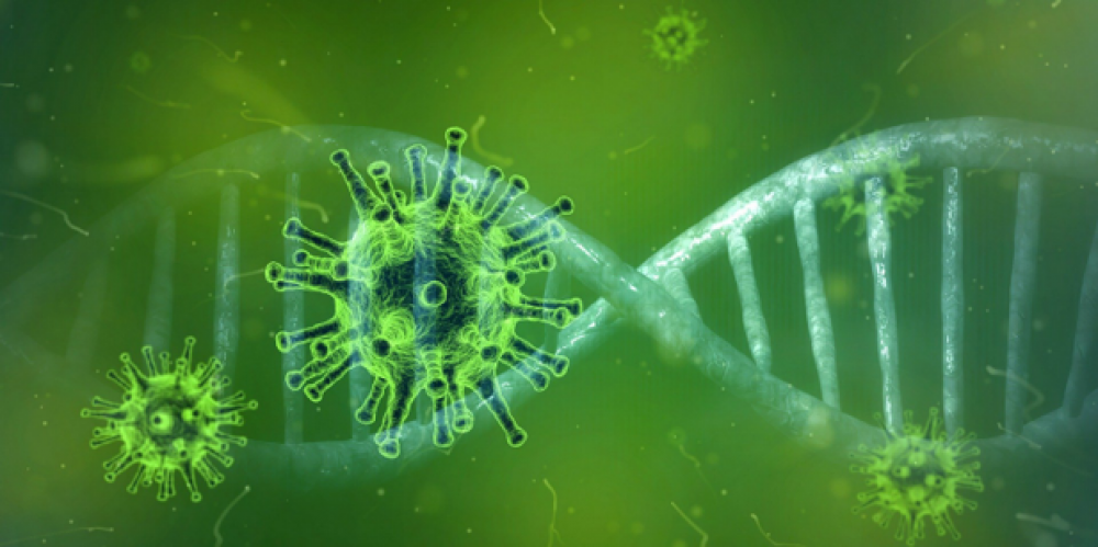 New COVID-19 RNA test gives accurate results within minutes